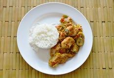 Kryddig uppståndelse stekte aubergine och chili för fiskboll med ris Royaltyfria Bilder