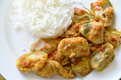 Kryddig uppståndelse stekte aubergine och chili för fiskboll med vanliga ris Arkivbild