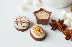 Kryddig varm kakao med marshmallower Fotografering för Bildbyråer