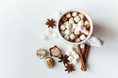 Kryddig varm kakao med marshmallower Royaltyfri Fotografi