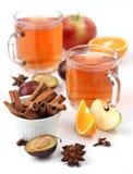 kryddig vinter för drink Royaltyfri Bild