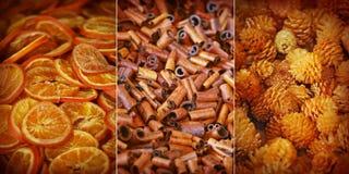 Kryddiga dofter Fotografering för Bildbyråer