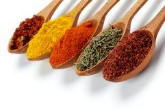 Kryddiga kryddor Arkivbilder