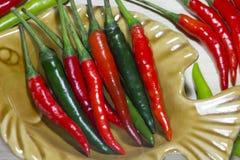 Kryddiga peppar Arkivbilder