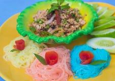Kryddigt griskött med färgrika nudlar Arkivbild