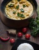 Kryddigt kött för traditionell curryhöna fotografering för bildbyråer