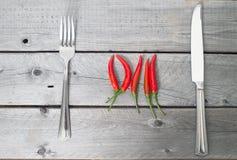 Kryddigt målbegrepp med chili royaltyfria foton