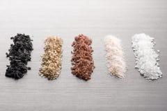 Kryddigt salta arkivfoton