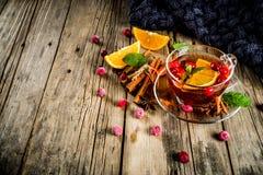 Kryddigt te för tranbär arkivbilder