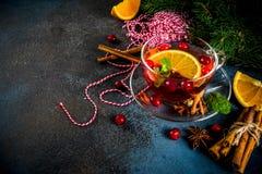 Kryddigt te för tranbär royaltyfri foto