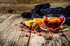 Kryddigt te för tranbär royaltyfri bild