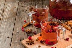 Kryddigt te med tranbäret arkivfoton