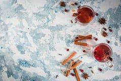 Kryddigt te med tranbäret royaltyfri fotografi