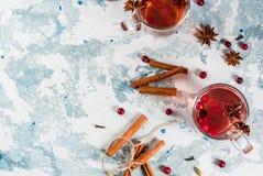 Kryddigt te med tranbäret arkivbild