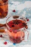 Kryddigt te med tranbäret royaltyfria foton