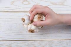 Kryddnejlikor av vitlök i hand i sikt royaltyfria foton