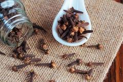 Kryddnejlikor kryddar för att laga mat royaltyfria foton