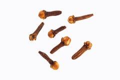 Kryddnejlikor kryddar för att laga mat royaltyfri bild
