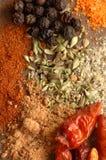 kryddor royaltyfri bild