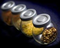 kryddor Arkivbild