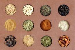 kryddor Royaltyfri Fotografi