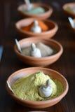 kryddor Arkivfoto
