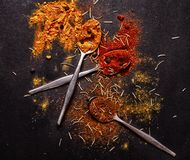 kryddor Royaltyfria Foton