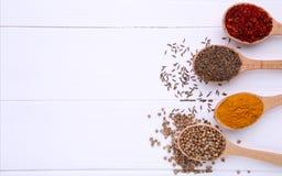 Kryddor blandar på träskedar på en vit träbakgrund Top beskådar royaltyfri bild