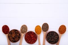 Kryddor blandar på träskedar på en vit träbakgrund Top beskådar royaltyfria foton