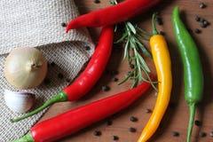 Kryddor - chili, lök, vitlök, peppar och mer Royaltyfria Foton