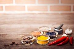 Kryddor för att laga mat kött: gurkmeja chilipeppar, barberry Royaltyfria Bilder