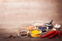 Kryddor för att laga mat kött: gurkmeja chilipeppar, barberry Arkivfoton