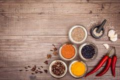 Kryddor för att laga mat kött: gurkmeja chilipeppar, barberry Royaltyfri Bild