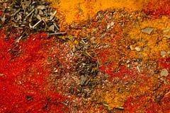 kryddor för bakgrundskopieringsavstånd Royaltyfri Fotografi