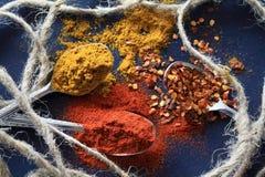 Kryddor för mat Royaltyfri Bild