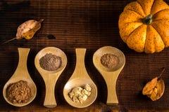 Kryddor för pumpapaj Royaltyfri Bild