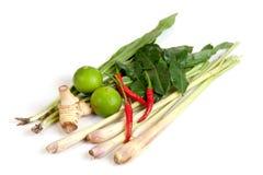 Kryddor för varm och sur thailändsk soppa fotografering för bildbyråer