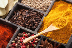 Kryddor i ask: rosa svartpeppar, paprikapulver, curry, fjärdbetesmark Arkivfoto