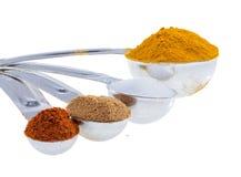 Kryddor, i att mäta skedar. Royaltyfri Foto