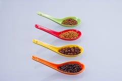 Kryddor i de kulöra skedarna Royaltyfria Bilder