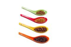 Kryddor i de kulöra skedarna Fotografering för Bildbyråer