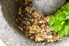 Kryddor i en molar Royaltyfria Foton