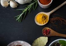 Kryddor i köket Fotografering för Bildbyråer