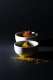 Kryddor i koppar på en svart bakgrund fotografering för bildbyråer