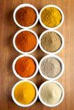 Kryddor i ramekins Arkivfoto