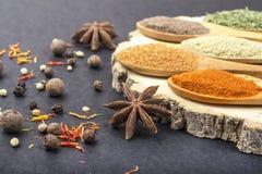 Kryddor i skedar royaltyfri foto