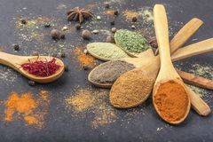 Kryddor i skedar fotografering för bildbyråer