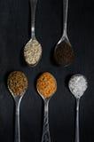 Kryddor i skedar Royaltyfri Fotografi