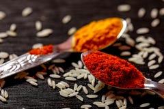 Kryddor i skedar på svart bakgrund arkivfoto