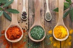 Kryddor i träsked på trägrund royaltyfri fotografi